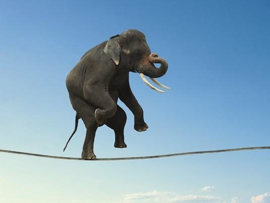 Bulls Are Walking A Tight Rope Here