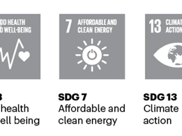 Tracking 20 leading cities' Sustainable Development Goals research