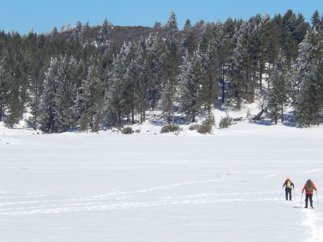 Snowshoeing in San Diego, a place better known for surf and sand