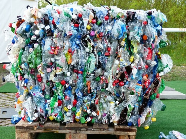 Recycling Myths You Might Be Believing