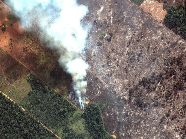 Fires rage in Amazon rainforest as Brazil's president, rights group trade blame