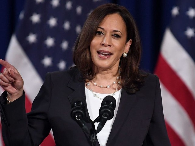 Kamala Harris is ready for a 2024 presidential run. But progressives have other ideas.
