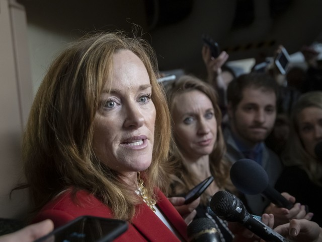 Kathleen Rice: Dems could lose seats if Nancy Pelosi is elected House speaker