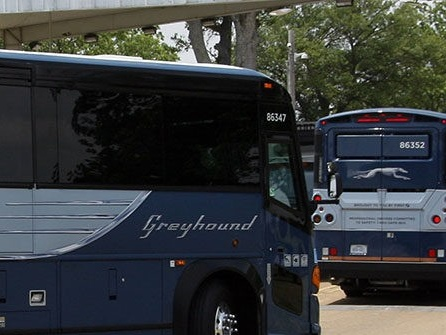 Greyhound to Stop Allowing Unwarranted Immigration Searches on Buses
