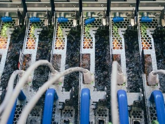 Finding New Ways To Cool Data Centers Is Big Tech's Newest Arms Race