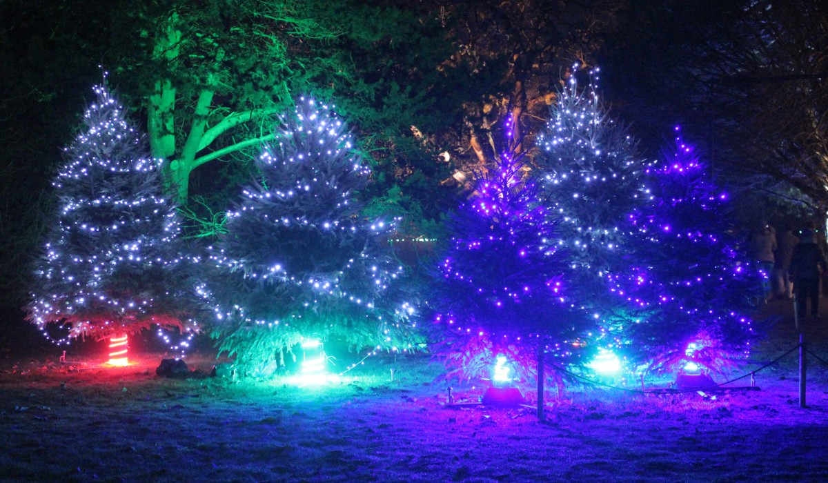 for the kew gardens christmas lighting show i worked again with ithaca to produce a control system that would control the lighting on 12 christmas trees at