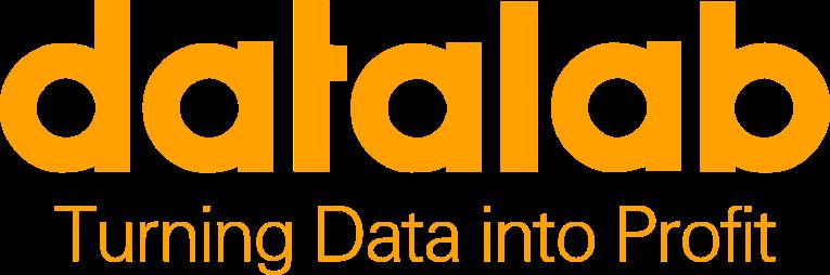 Datalab LLC