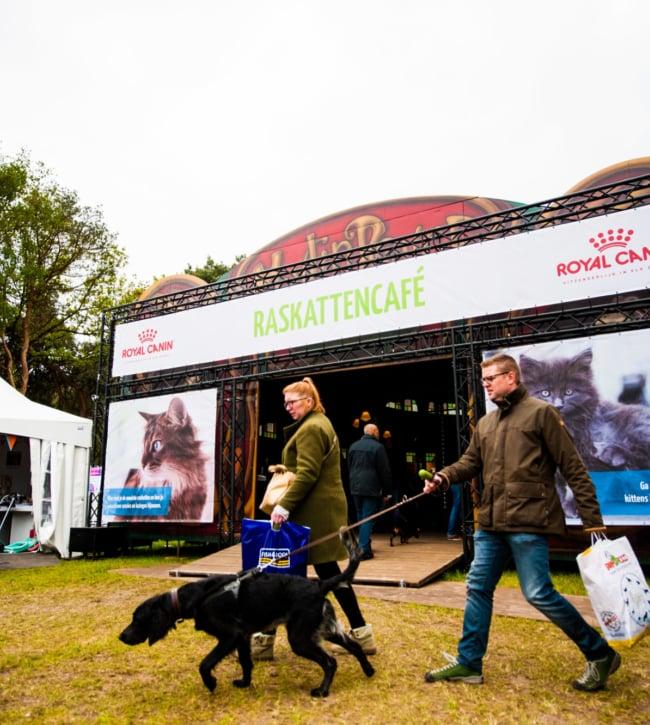 Av Animal Event 11