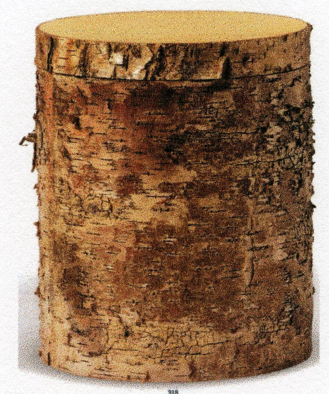 Urne i bjørketre med bark