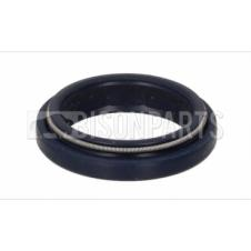 DAF 95XF & LF55, IVECO EUROCARGO & EUROTECH & VOLVO FM9, FM12, FH12 & FH16 STEERING SHAFT SEAL