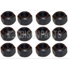 VOLVO FMX 2013 ONWARDS REAR AXLE HALFSHAFT NUTS (PKT 12)