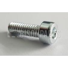 IVECO UPPER MIRROR ARM COVER SCREW