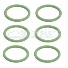 ENGINE OIL COOLER SEAL RING