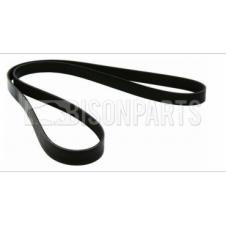 MULTI RIBBED POLY V-BELT