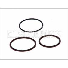 INJECTOR SEAL REPAIR KIT