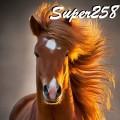 super258
