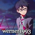 werner1993
