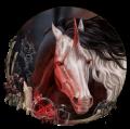 ruby roxss