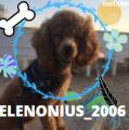 elenonius_2006
