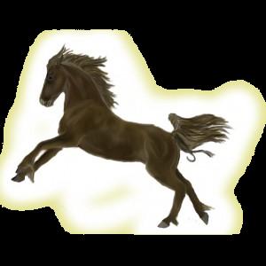 Caballo de montar Pura raza española Bayo cereza
