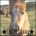 ★chiloe island★