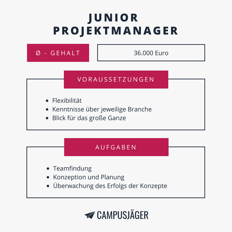 Junior Projektmanager Infografik