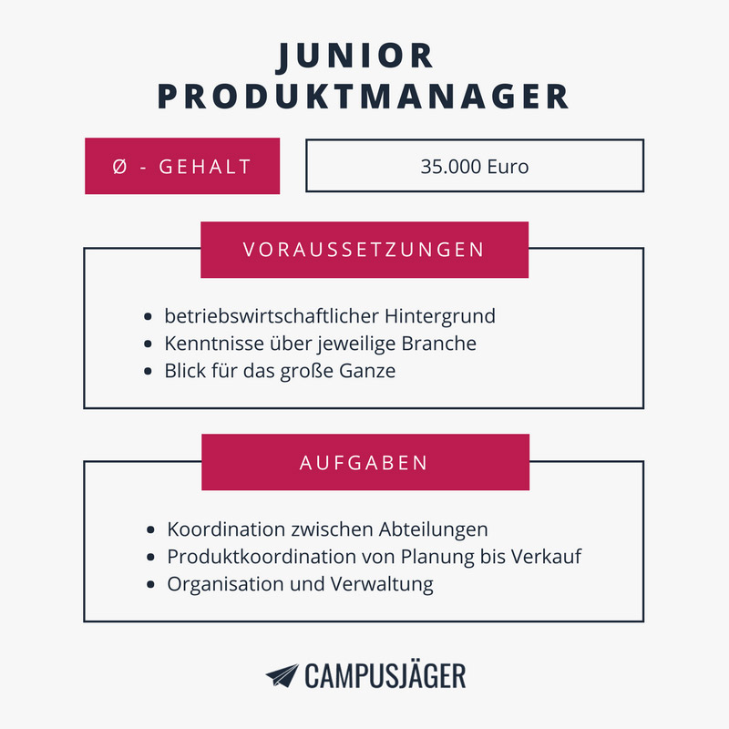 Junior Produktmanager Infografik
