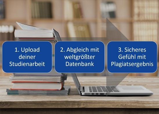Schritte zur Plagiatsprüfung
