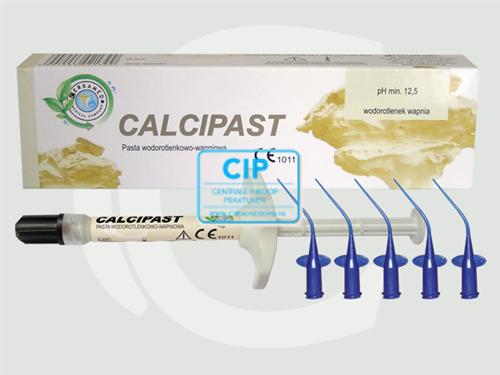 CERKAMED CALCIPLAST CALCIUM HYDROXIDE SPUITJE (2,5gr/5 tips)