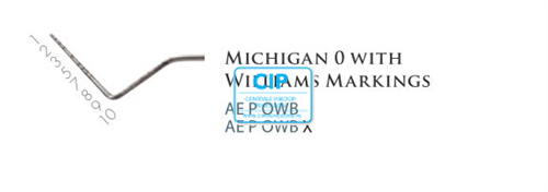 AMERICAN EAGLE MICHIGAN SONDE 0 MET WILLIAMS MARKERING RVS HANDLE NR.AEPOWB