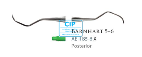 AMERICAN EAGLE LITE BARNHART IMPLANTAAT SCALER II B5-6X NR.AEIIB5-6X
