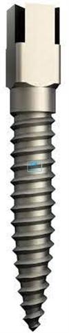 DENTATUS TITANIUM POST TST-S1 7,8x1,05mm (15st)