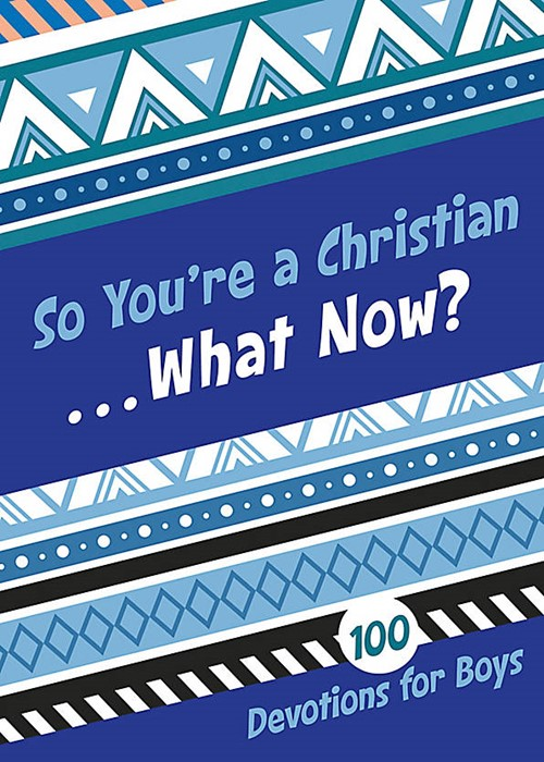 So You're A Christian...What Now? Boys (Paperback)