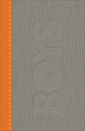 CSB Study Bible For Boys Charcoal/Orange, Wood Design (Imitation Leather)