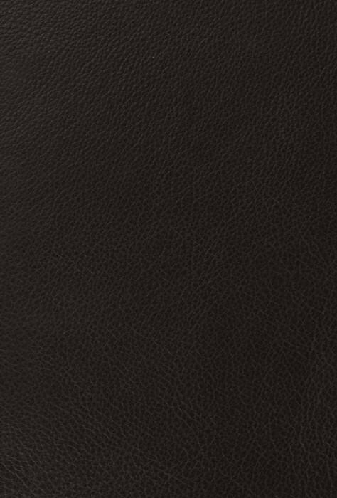 ESV Reader's Bible, Six-Volume Set, Cowhide over Board (Leather Binding)