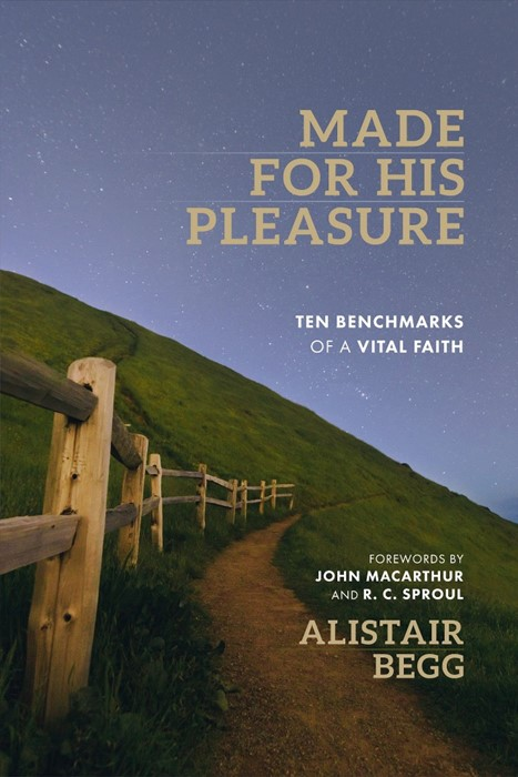 Made for His Pleasure (Paperback)