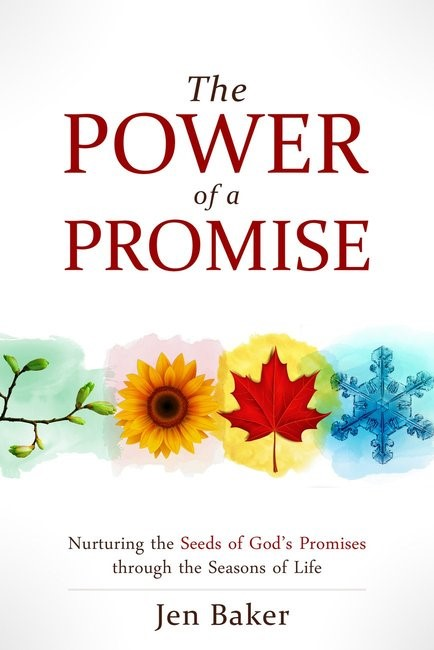 The Power Of A Promise (Paperback)