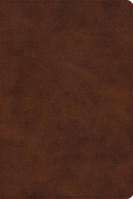 ESV Story of Redemption Bible (Imitation Leather)