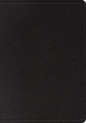 ESV Large Print Wide Margin Bible (Black) (Leather Binding)