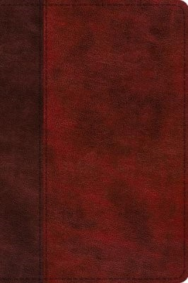 ESV Journaling New Testament, Inductive Edition (Imitation Leather)