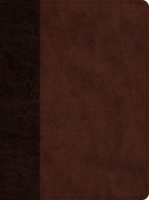 ESV Proverbs: Daily Wisdom (TruTone, Brown/Walnut, Timeless (Imitation Leather)