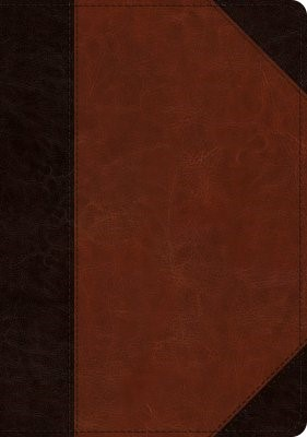 ESV Large Print Wide Margin Bible TruTone, Brown/Cordovan (Imitation Leather)