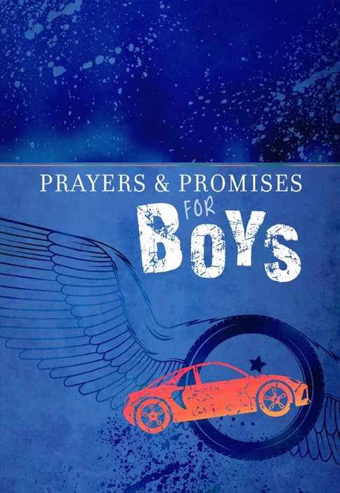 Prayers and Promises for Boys (Paperback)