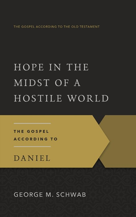 Hope in the Midst of a Hostile World (Paperback)