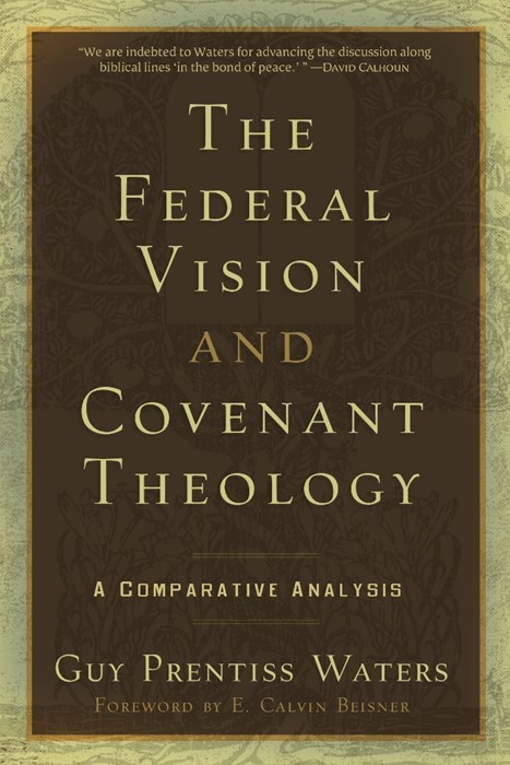 Federal Vision and Covenant Theology (Paper Back)