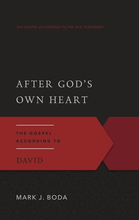 After God's Own Heart: The Gospel According to David (Paper Back)