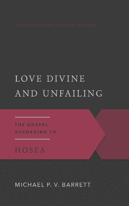 Love Divine and Unfailing (Paperback)