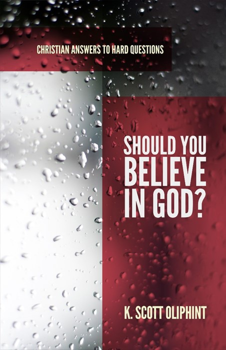 Should You Believe in God? (Paperback)