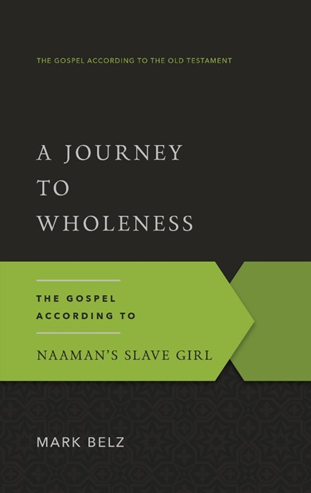 Journey to Wholeness, A (Paper Back)