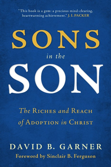 Sons in the Son (Paper Back)
